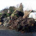 Organische Biomasse auf dem Kompost im Botanischen Garten Berlin