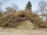pflanzliche Abfälle